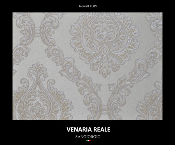 venaria-reale-6